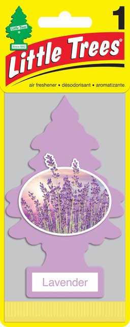Pinito little trees lavender